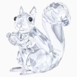 Squirrel 5135941