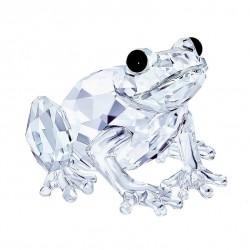 Frog 5243741