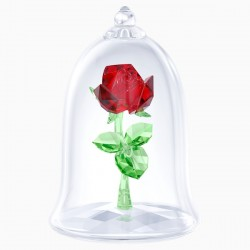 Rosa encantada 5230478